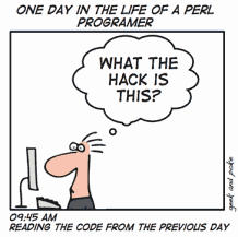 comics_one_day_in_the_life_of_a_perl_programer.png